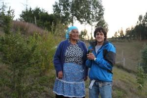 daniel tirado chile mapuche