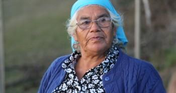 doña catalina huerto medicinal mapuche