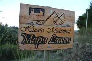 mapu lawen huerto medicinal mapuche